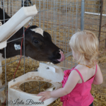 Family Day Trip to Caballero Dairy Farm