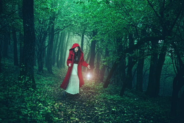 Teaching Your Children How to Avoid Everyday Dangers Through Reading: Little Red Riding Hood