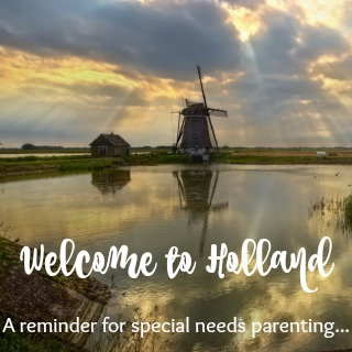 Welcome to Holland: A Reminder for Special Needs Parenting