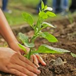 How To Raise Eco-Conscious Kids