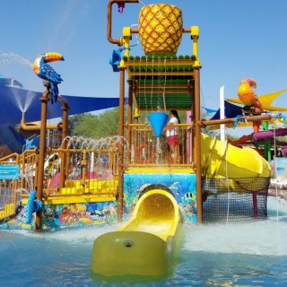 How to Survive the Water Park