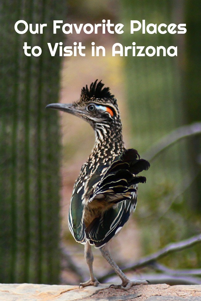 Our Favorite Places to Visit in Arizona